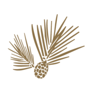 North State Bank Logo
