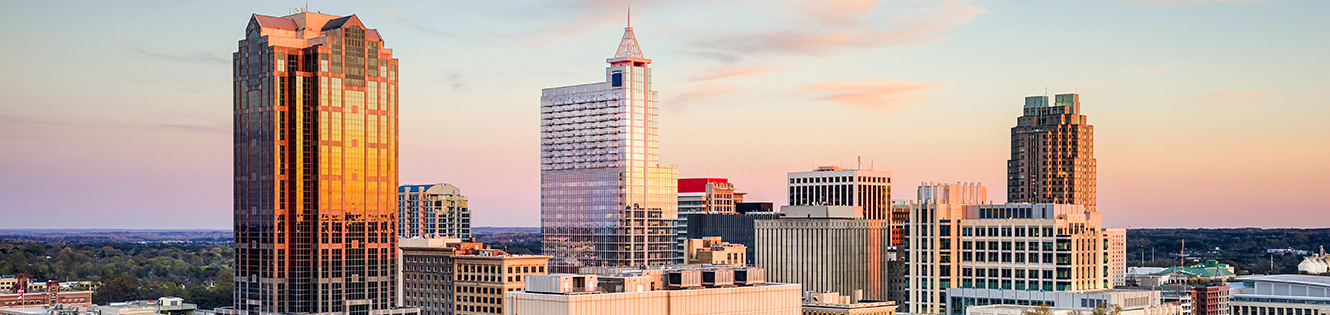 Raleigh Skyline Header Graphic