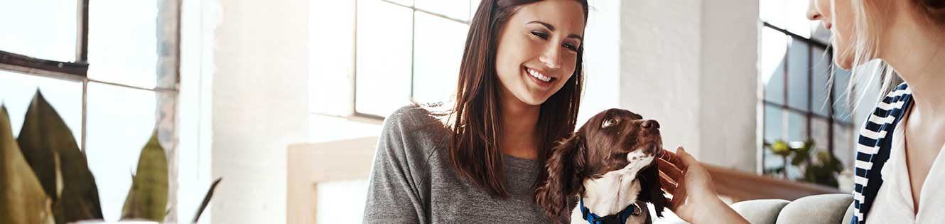 Two women petting dog header image